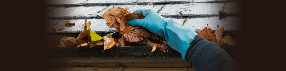 Services: Gutter Cleaning - J and G Tree Services - Tree ...